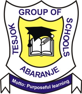 TESJOK GROUP OF SCHOOLS